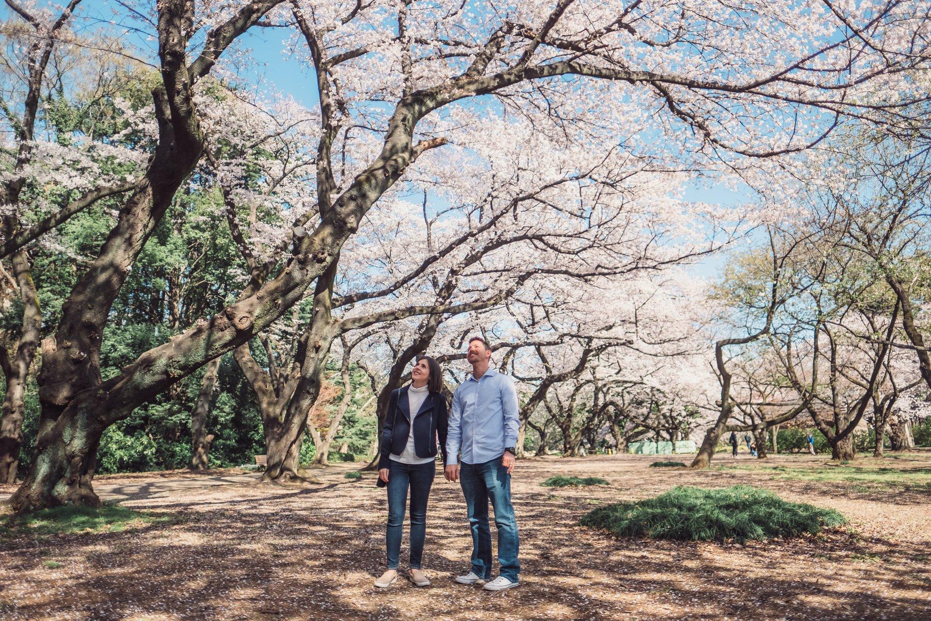 Coo and Yurika's Portfolio - Image 7