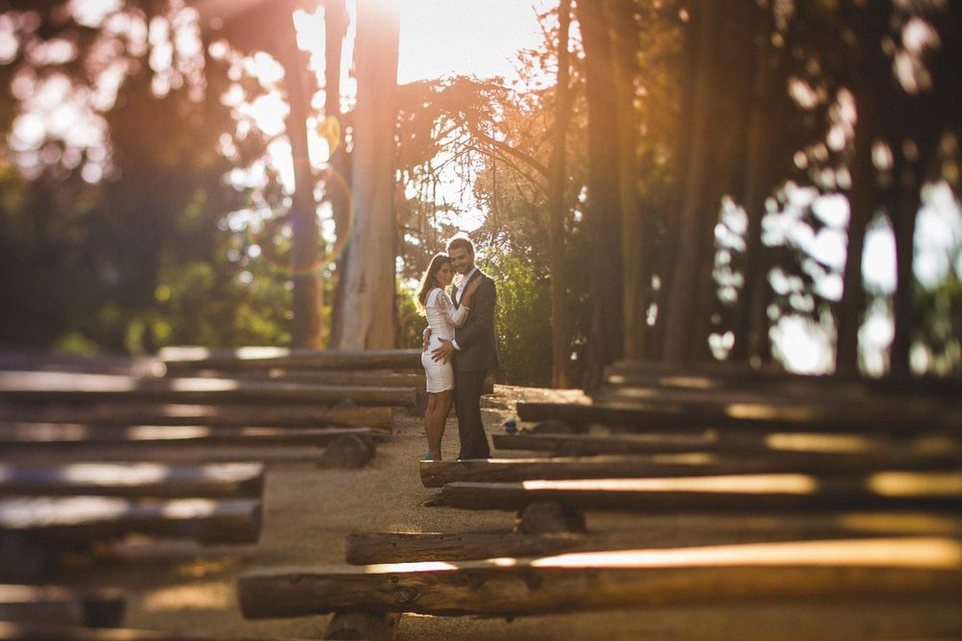 Andrés's Portfolio - Image 11
