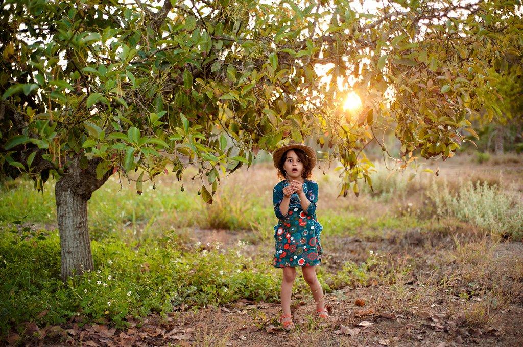 Diana's Portfolio - Image 10
